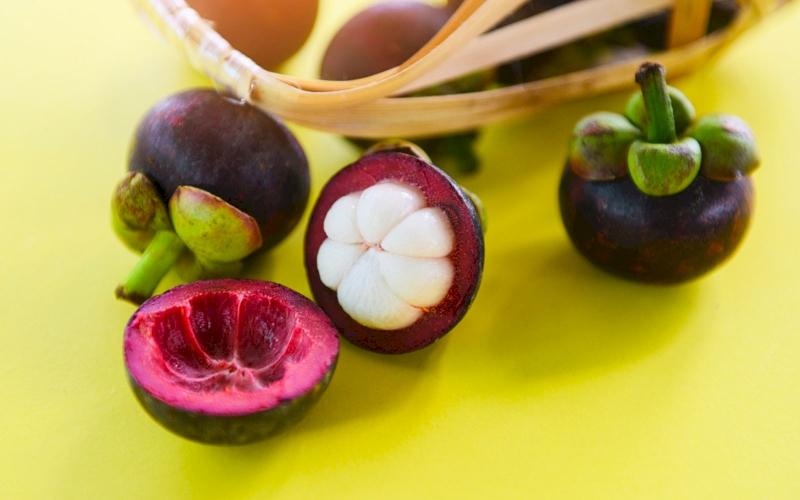 Can Mangosteen Peel be Used as Diabetic Medicine?
